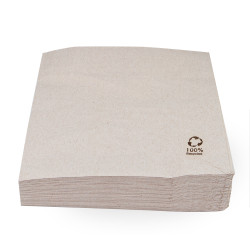 Servilletas Papel Ecológicas 30x30cm (100 Uds)